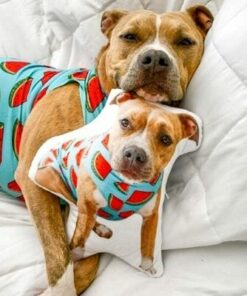 """Idollio website 8 <h1 style=""""text-align: center;""""><strong> [title text=""""PERSONALIZED PILLOW"""" style=""""center""""]</strong></h1> <ul> <li>Handwork</li> <li>Create a 3D pillow with the image of your loved one, yourself or an animal.</li> <li>Keep your loved ones or pets with you at all time. Take them with you.</li> <li>The perfect gift for everyone</li> <li>2 sizes: 45 cm or 55 cm.</li> </ul> [message_box bg] <strong>The most unique gift you can give to your loved ones. The emotional response will be invaluable!</strong>[/message_box]"""